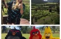 Angry Birds Movie: Ziplining