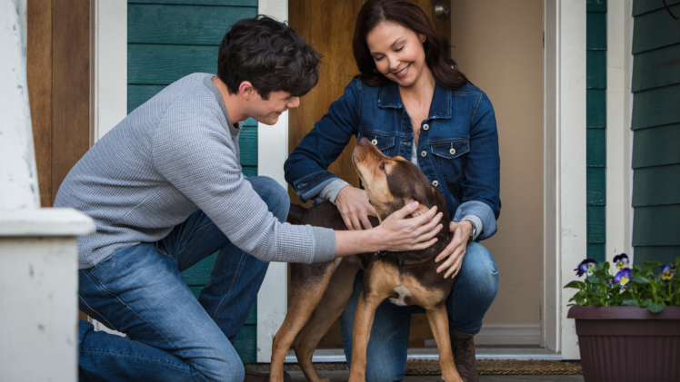 Ashley Judd: From Dogs to Apes, Faith and Family
