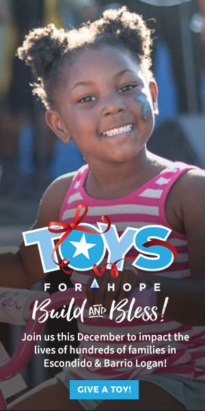 Toys-for-hope